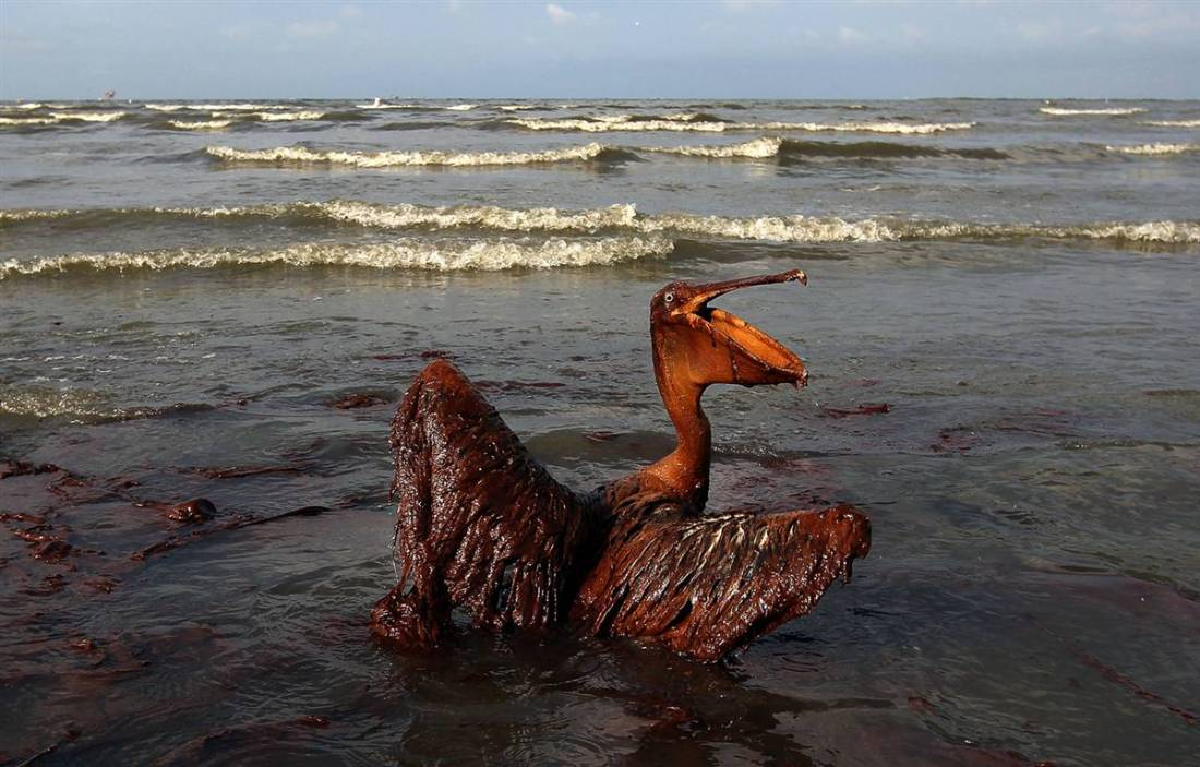 636018189401756366-1111187066_oil spill